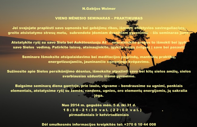 NGW_menesio_seminaras_1