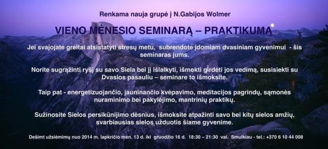 2014_menesio_seminaras_praktikumas