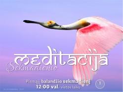 SEKMADIENIO MEDITACIJA. 2017-4-2 12:00