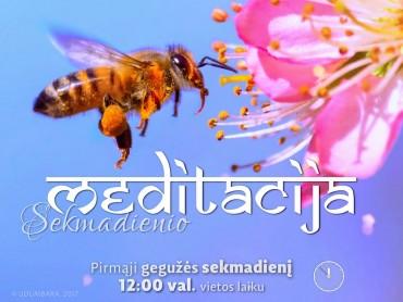 SEKMADIENIO MEDITACIJA. 2017-5-7 12:00