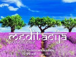 SEKMADIENIO MEDITACIJA. 2017-6-4 12:00