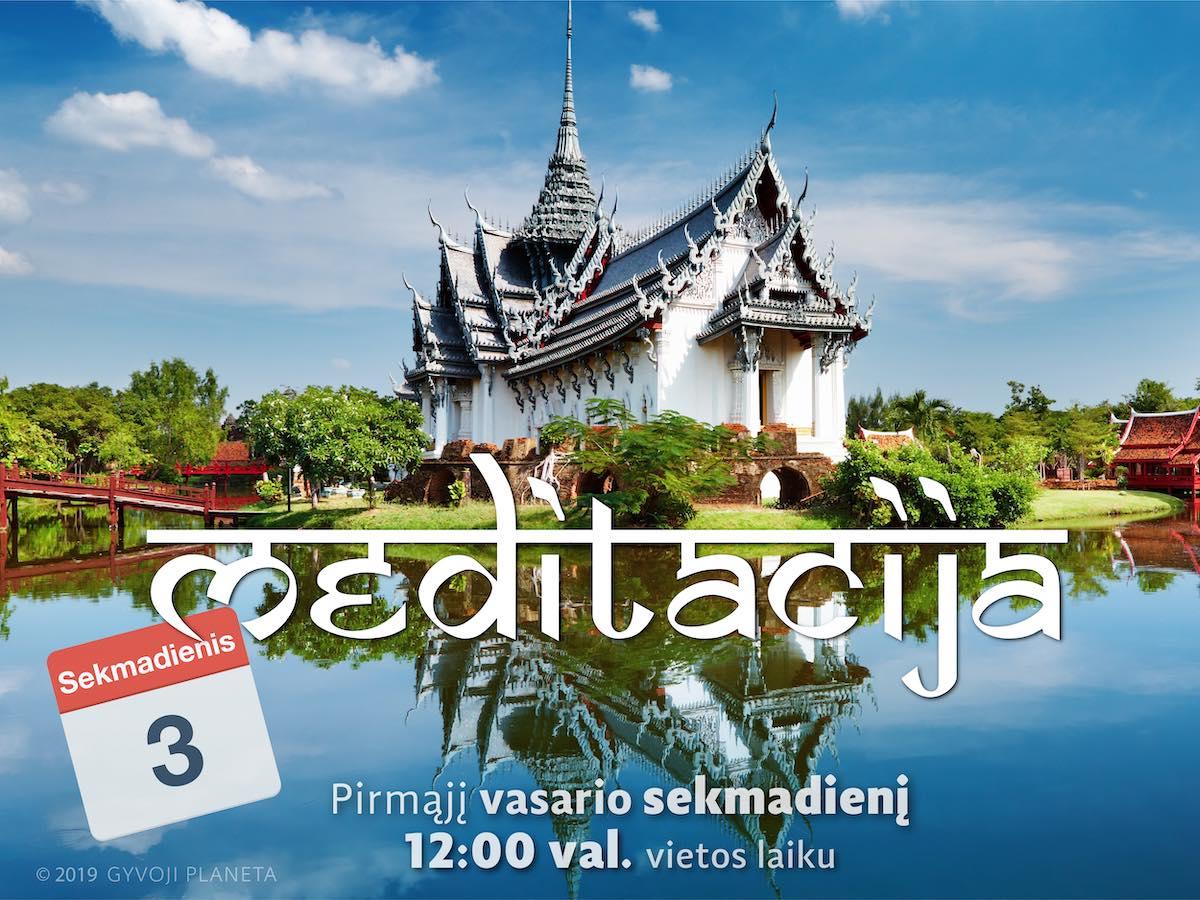 Sekmadienio MEDITACIJA 2019-02-03