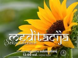 SEKMADIENIO MEDITACIJA. 2017-8-6 12:00